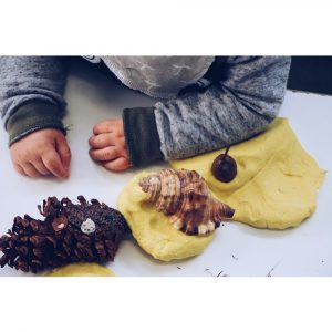 Sensory Integration Shells And Pine Cones With Toddler Arms Resting In Frame
