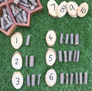 Counting Twigs Discs Numbered 1-10 With Corresponding Twigs