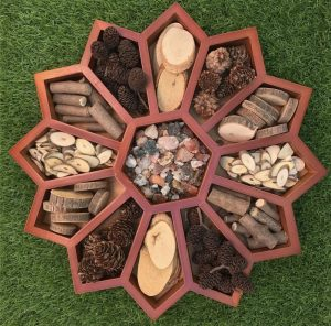 Loose Parts Natural Materials In Flower Sorting Tray