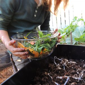 Girl Adding Scraps To Worm Farm